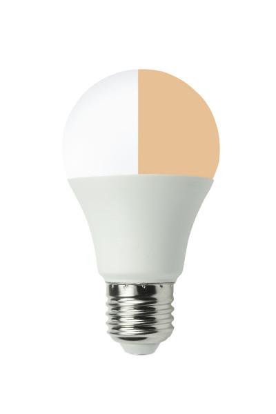 LED Lampe 12 Watt E27 duolight natur-nah